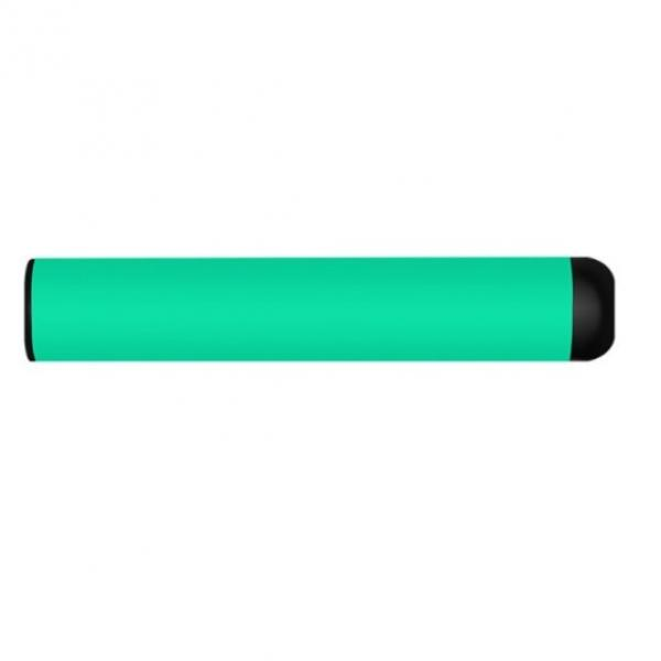 2020 Best Empty Disposable e cig Device for 300 puffs #1 image